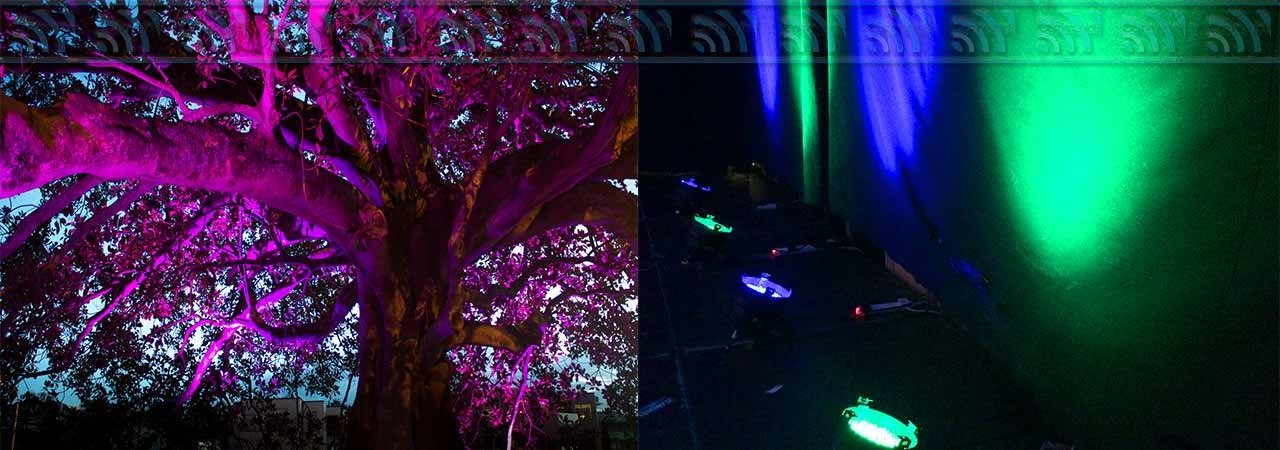 Outdoor Lighting for Buildings and Trees in West Wales
